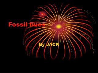 Fossil flues