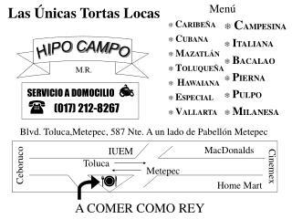 HIPO CAMPO