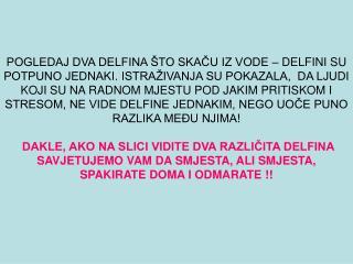 ! IDI  D O M A !