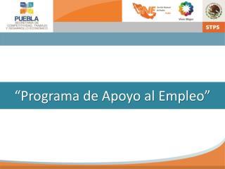 """""""Programa de Apoyo al Empleo"""""""