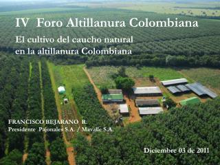 IV  Foro Altillanura Colombiana