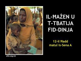 IL-ĦAŻEN U T-TBATIJA FID-DINJA 12-il Ħadd  matul is-Sena A