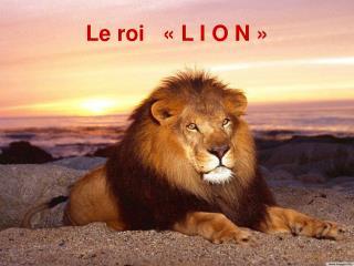 Le roi   «L I O N»