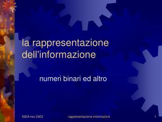 la rappresentazione dell'informazione