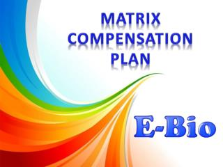 MATRIX  COMPENSATION PLAN
