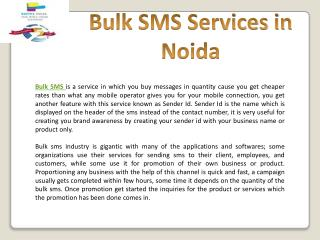 Bulk SMS Services in Noida