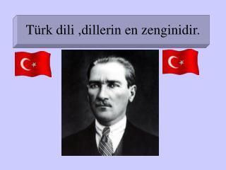 Türk dili ,dillerin en zenginidir.