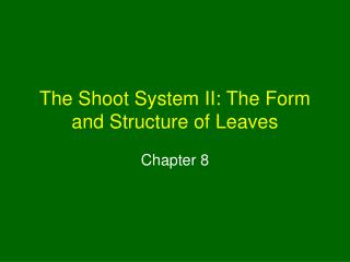 The Shoot System II: The Form and Structure of Leaves