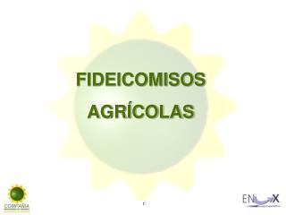 FIDEICOMISOS  AGR�COLAS