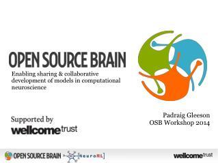 Padraig Gleeson OSB Workshop 2014