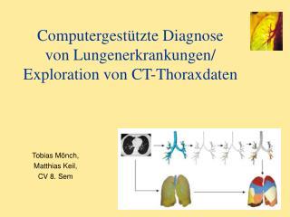 Computergestützte Diagnose von Lungenerkrankungen/ Exploration von CT-Thoraxdaten