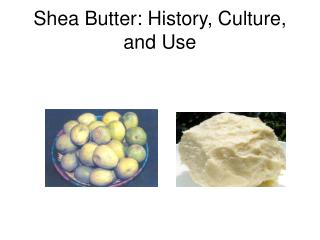 Shea Butter: History, Culture, and Use