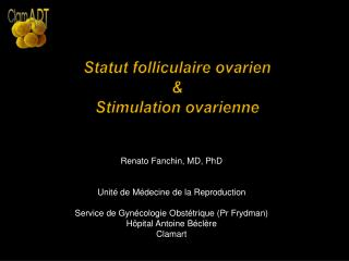 Statut folliculaire ovarien & Stimulation ovarienne