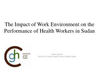 The Impact of Work Environment on the Performance of Health Workers in Sudan