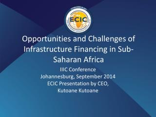 Opportunities and Challenges of Infrastructure Financing in Sub-Saharan Africa
