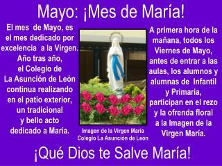 Imagen  de la  Virgen María Colegio  La Asunción de  León