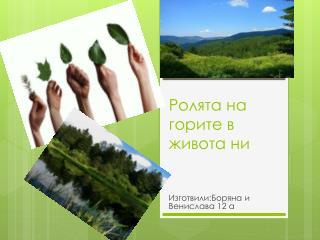 Ролята на горите в живота ни