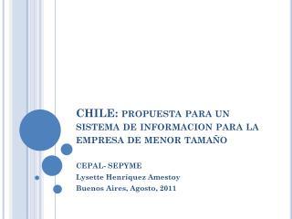 CHILE: propuesta para un sistema de informacion para la empresa de menor tamaño