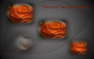 """""""The  rose """" van Bette  Midler"""