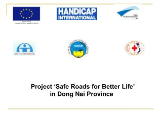 Project 'Safe Roads for Better Life'  in Dong Nai Province