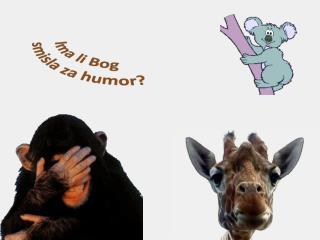 Ima li Bog  smisla  za humor ?