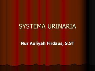SYSTEMA URINARIA
