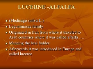 LUCERNE -ALFALFA