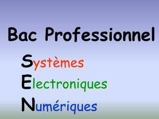 Bac Professionnel