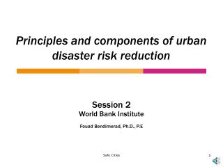 Principles and components of urban disaster risk reduction