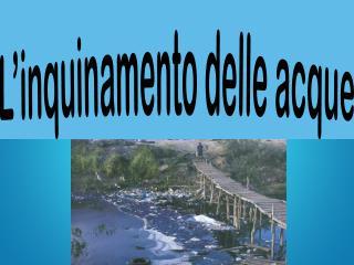 L'inquinamento delle acque