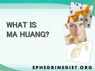 WHAT IS  MA HUANG?