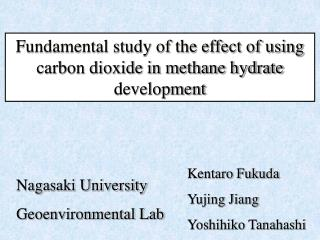 Fundamental study of the effect of using carbon dioxide in methane hydrate development