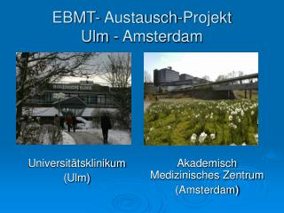 EBMT- Austausch-Projekt Ulm - Amsterdam