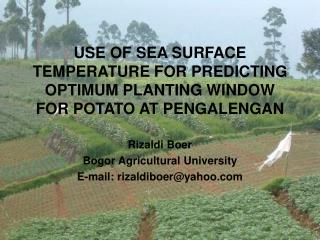 USE OF SEA SURFACE TEMPERATURE FOR PREDICTING OPTIMUM PLANTING WINDOW FOR POTATO AT PENGALENGAN