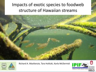 Impacts  of exotic species to  foodweb  structure of  Hawaiian streams
