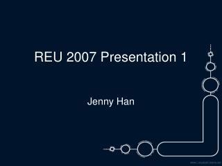 REU 2007 Presentation 1