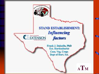 STAND ESTABLISHMENT: Influencing  factors
