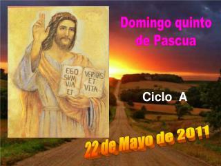 Domingo quinto de Pascua