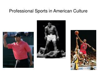 Professional Sports in American Culture