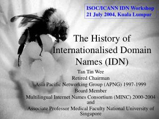 The History of Internationalised Domain Names (IDN)