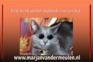 Een week uit het dagboek van een kat.