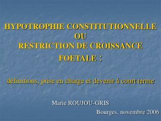 Marie ROUJOU-GRIS Bourges, novembre 2006