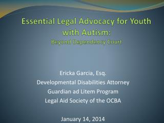 Essential Legal Advocacy for Youth with Autism:  Beyond Dependency Court