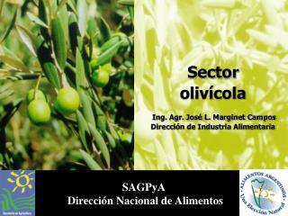 Sector  olivícola  Ing. Agr. José L. Marginet Campos Dirección de Industria Alimentaria