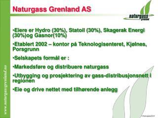 Naturgass Grenland AS