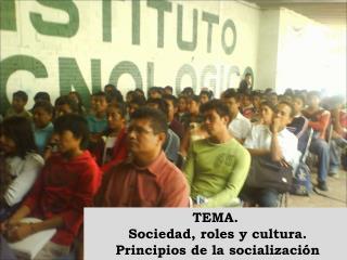 TEMA.  Sociedad, roles y cultura.  Principios de la socialización