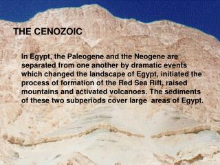 THE CENOZOIC