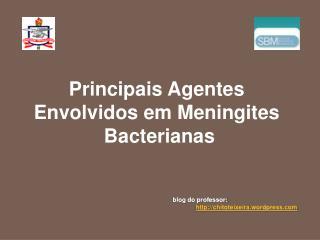Principais Agentes  Envolvidos em Meningites  Bacterianas