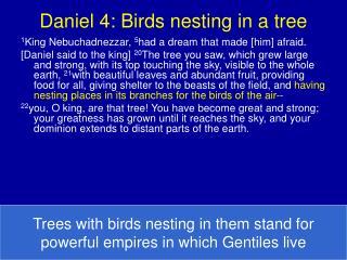 Daniel 4: Birds nesting in a tree