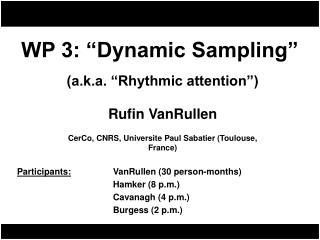 WP 3: �Dynamic Sampling�